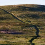 Nose Hill Park in NW Calgary homes for sale