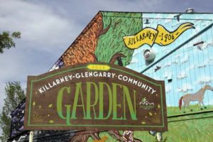 killarney glengarry community garden