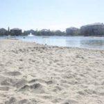 arbour lake calgary real estate