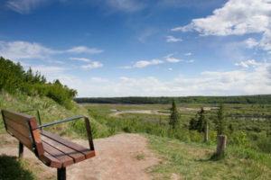 SW Calgary park bench