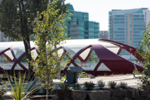 Peace bridge calgary condos