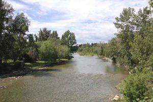 elbow river calgary